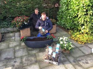 Robs Grote Tuinverbouwing, Plantplezier